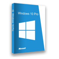 Microsoft Windows 10 Professional License